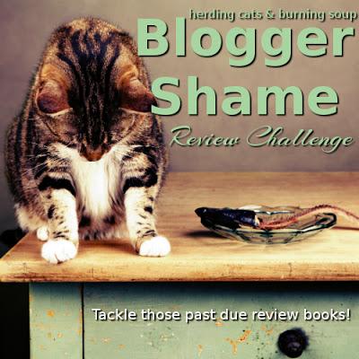 blogger-shame